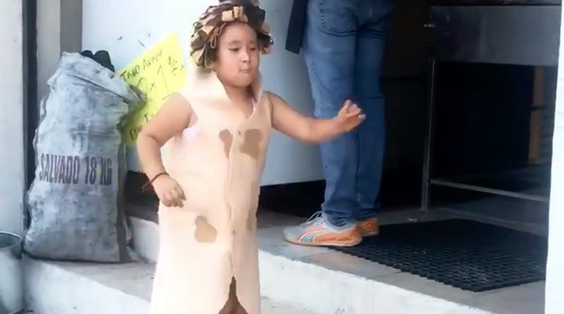 Cute 6yo Dresses As Taco To Help Out Parents Restaurant