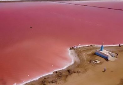 Pink Sea Selfie Tourists Put Miners Out Of Business
