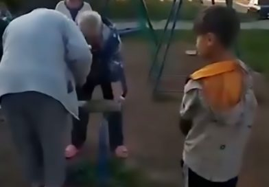 Moment Grumpy Lady Cuts Noisy Kids Seesaw Into Pieces