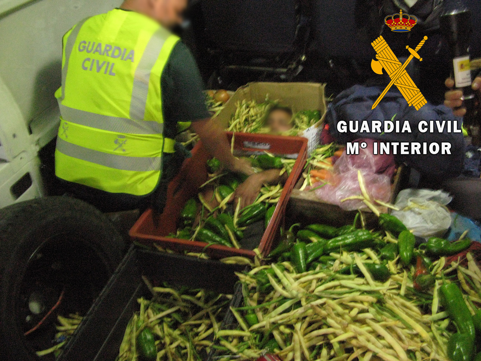 Spanish Cops Find African Migrant Among Boxes Of Veg