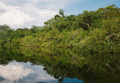 The Loneliest Man in the World Lives in the Amazon—and Brazil's Government Takes Care of Him